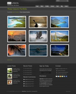 1. PureVision WP Theme