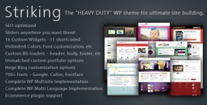 10. Striking Premium WP Theme