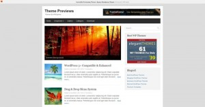 2. Basic WordPress Theme