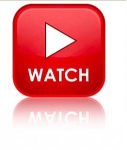 8. Brand videos