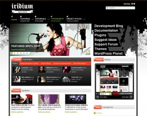 8. Iridium WordPress Theme
