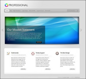 8. Professional WordPress Theme