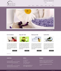 9. U-Design Professional WP Theme
