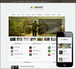 Aggregate Responsive Newsletter Theme for WordPress