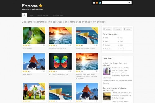 Expose Gallery WordPress Theme - 3 in 1
