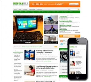 Resizable Responsive Theme
