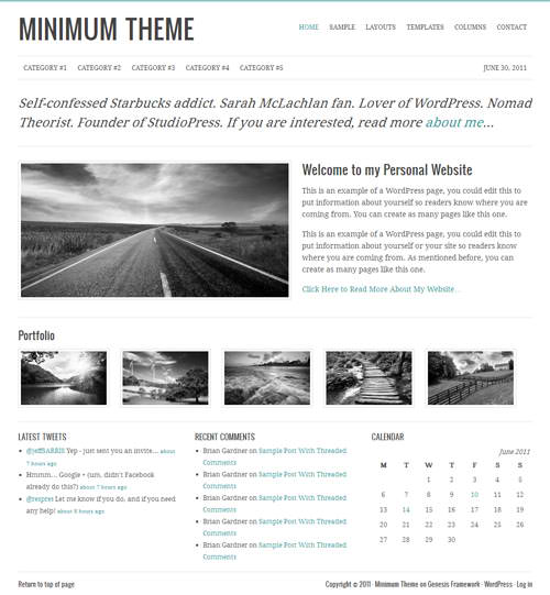 10 Minimum WordPress Theme