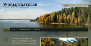 4 WP Traveller