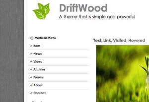 4. Driftwood