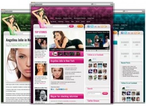 8 CelebrityPress WordPress Theme