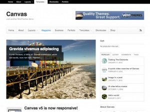 9 WooThemes Canvas