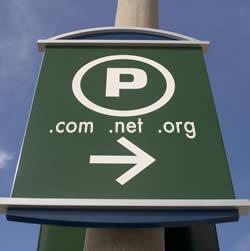 9. Parked Domain Websites