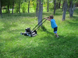 8. Mowing Lawns and Shovel Driveways