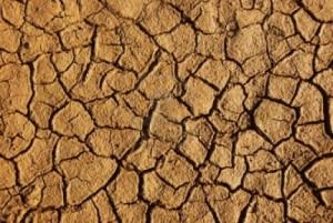1 Weathered Desert Soil