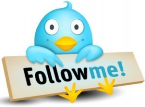 8. Follow People that Have Many Followers
