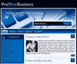6. Pro Blue Business WordPress Theme