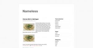 9. Nameless WordPress Theme