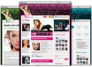 8 CelebrityPress WordPress Theme