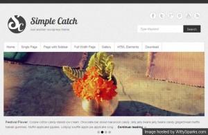 9 Simple Catch