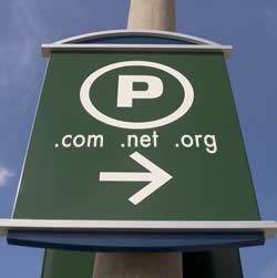 9. Parked Domain Websites