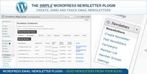 4. WordPress E-mail Newsletter Plugin