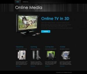5 Online Media